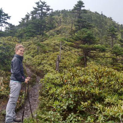 Gran parte de la subida es entre árboles, pero después se despeja para poder ver las vistas