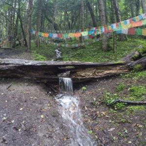 El agua de la lluvia se abría paso por todos los huecos