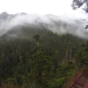 La niebla ayudaba a darle el toque místico al entorno