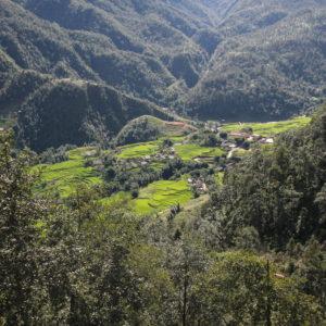 Incluso desde aquí pudimos tener unas vistas de algunos arrozales