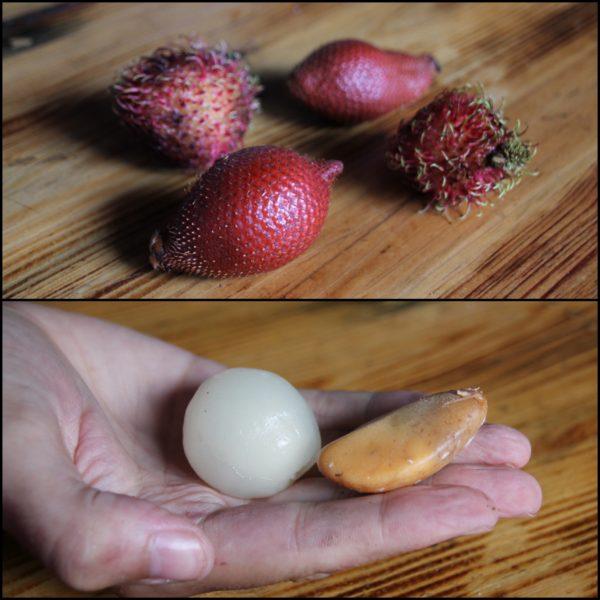 Las chinas de nuestro hostal también nos dieron a probar estas dos frutas: el rambután (parecido al lichi) y la fruta de la serpiente (llamada así por la textura de su piel). ¡Muy buenas las dos!