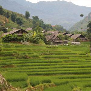 Las casas y los pueblos se funden con los campos
