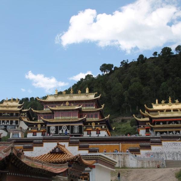 El complejo se componía de varios templos y un montón de pequeñas casas donde vivían los monjes