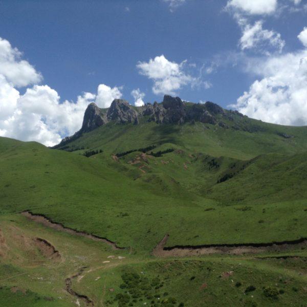 Montañas y paisajes verdes