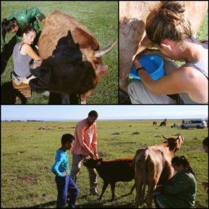"""Ordeñar vacas fue la siguiente tarea de """"Amaia en la granja"""""""