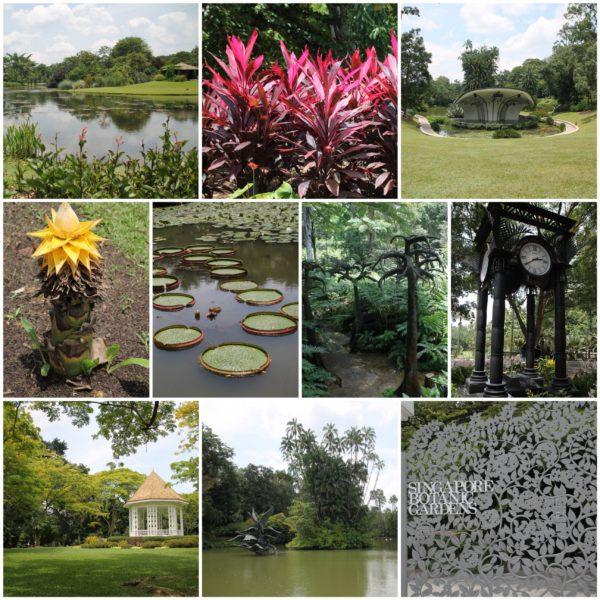El jardín botánico de Singapur nos pareció enorme, tranquiloy un lugar perfecto para desconectar