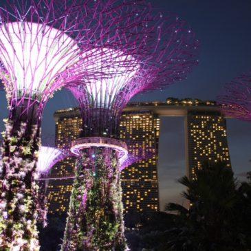 Singapur (días 245-246)