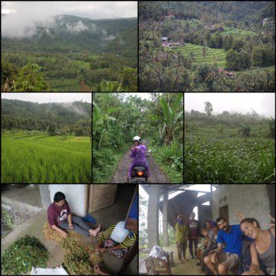 Nuestra aventura por la montaña, los arrozales y los pueblitos perdidos de Bali